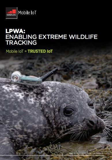 LPWA: Enabling Extreme Wildlife Tracking image