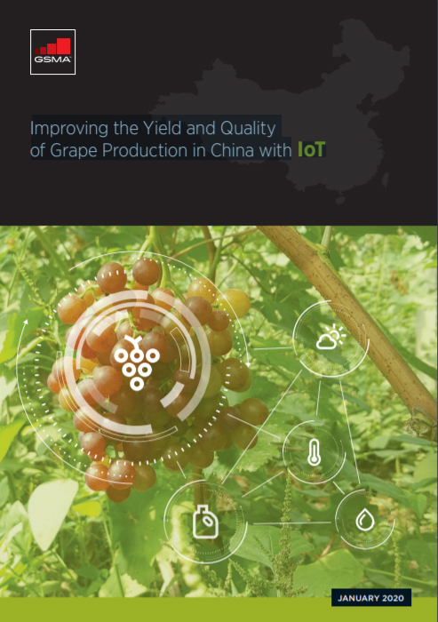 Improving the Yield and Quality of Grape Production in China with IoT image