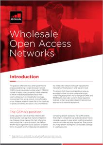 Riesgos asociados a las redes mayoristas de acceso abierto image