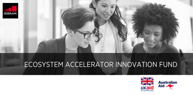Ecosystem Accelerator Innovation Fund image