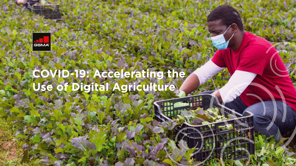 COVID-19: Accelerating the use of digital agriculture image