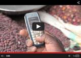 world-bank-video