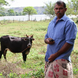 Dambulla: An agricultural hub being transformed by mobile