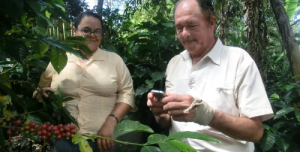The Experience of Mobile Banking for Coffee Growers in Colombia